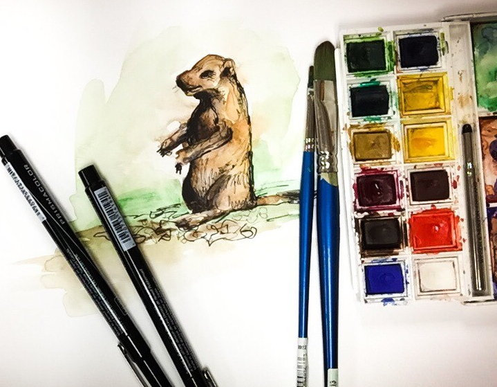Watercolor time-lapse painting of Oklahoma's most adorable rodent.