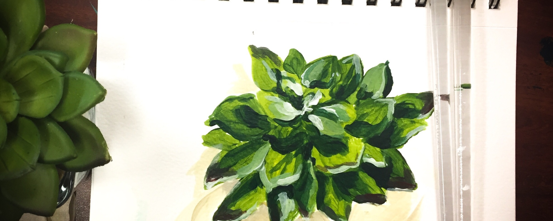 This time-lapse video shows you to paint a succulent plant using acrylic paint and only four colors!