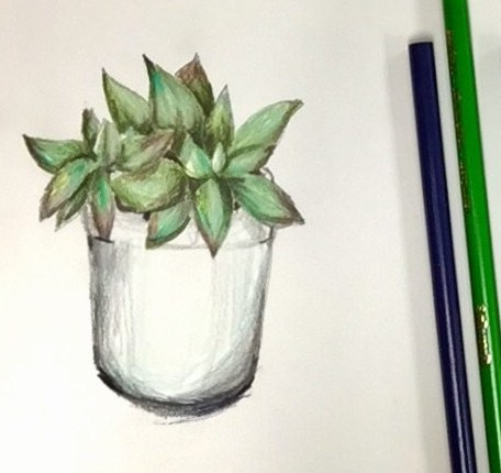 A colored pencil succulent drawing by that Art Teacher.