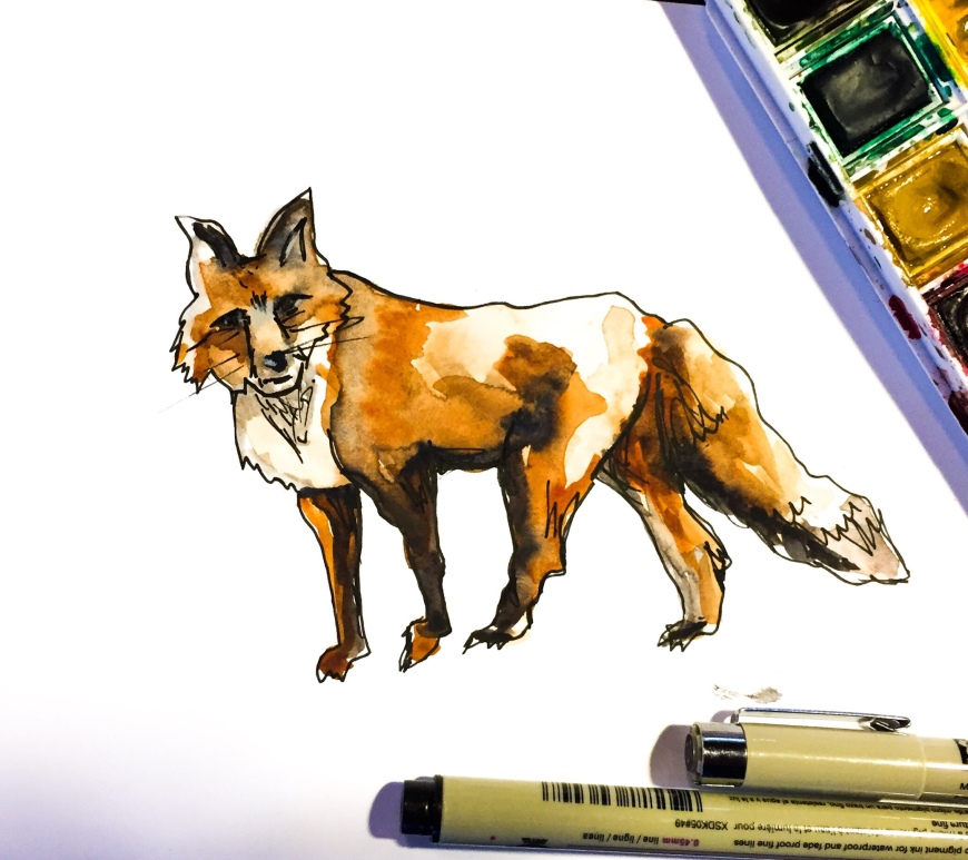 Learn how to paint a fox using simple earth colors and finishing Micron pen details with this time lapse watercolor tutorial.