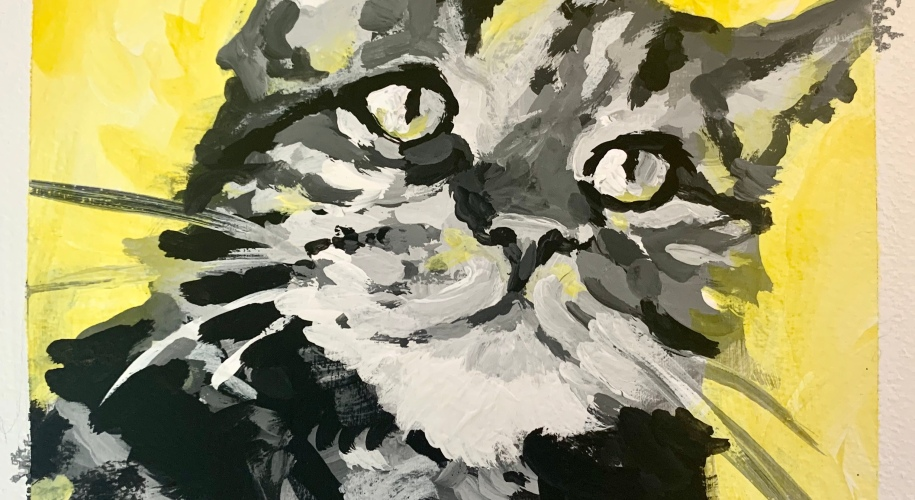 gray scale pet portrait